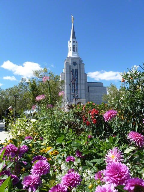 Auf diesem Bild ist der Tempel in Boston, Massachusetts, mit Blumen im Vordergrund, zu sehen.