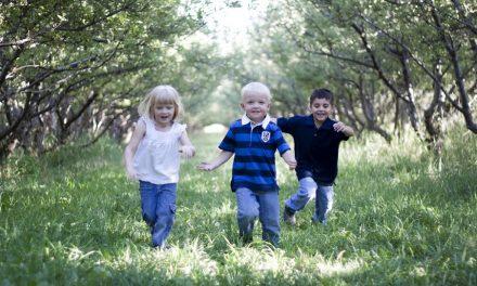 Eine heile Welt für die Kinder: Wie man Kindern Frieden beibringt