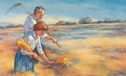 Die fruchtbare Ernte des Sabbats