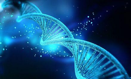 Wissenschaft: Wie Glaube die Gesundheit fördert