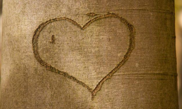 4 Eigenschaften des natürlichen Menschen, die der Ehe schaden (und wie man sie ablegt)