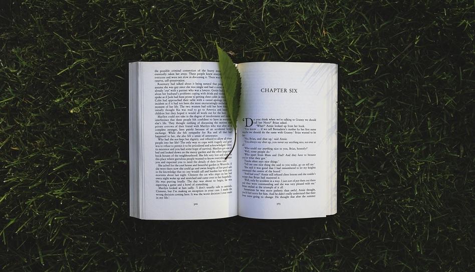 Buch Fluchen