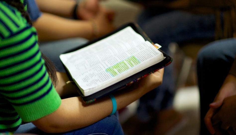 Zu sehen ist eine Gruppe, die gemeinsam im Buch Mormon studiert.