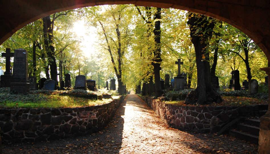 Zu sehen ist ein Ort, an dem der Tod eine bedeutende Rolle spielt, ein Friedhof.