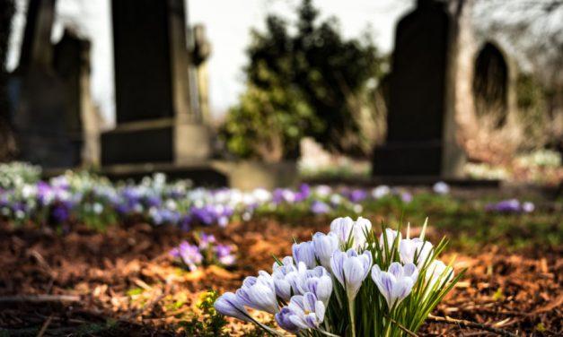 Gibt es ein Leben nach dem Tod?