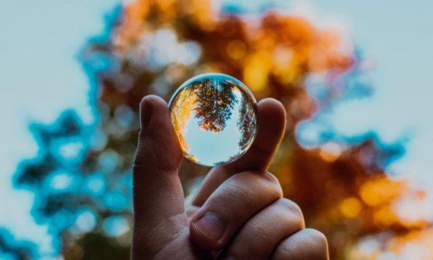Umweltschutz aus der Sicht des Evangeliums