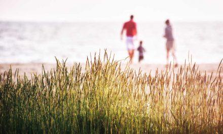 7 Schritte, um verantwortungsvolle Kinder großzuziehen
