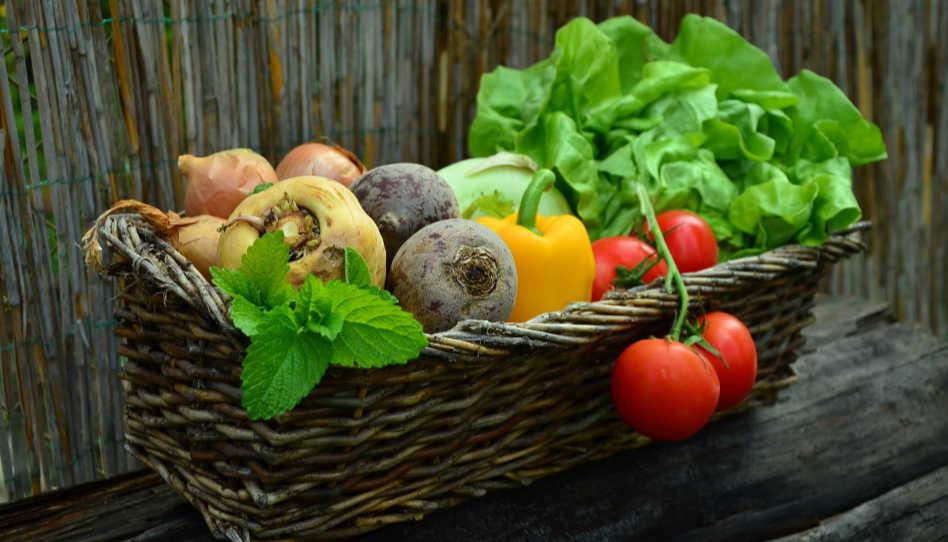 Hier sind verschiedene Gemüsesorten in einem Korb zu sehen, da Vitamine unsere Abwehrkräfte stärken und so ebenfalls eine Hilfe gegen Hilflosigkeit darstellen.