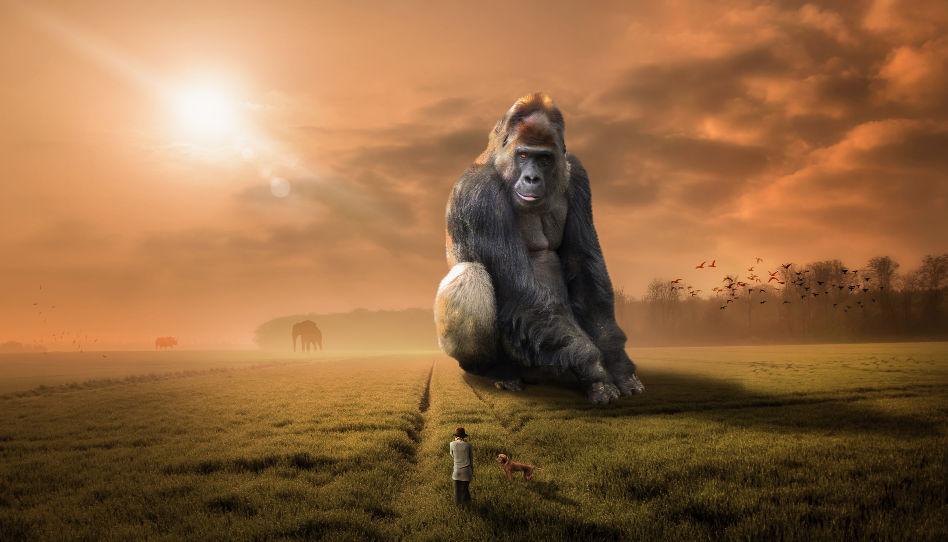 Auf diesem Bild ist im Vordergrund ein Mann mit seinem Hund zu sehen, im Hintergrund ein riesengroßer Gorilla.