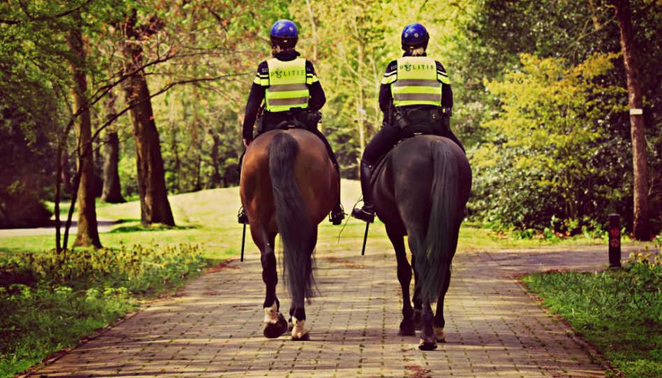 Hier sind zwei Polizisten von hinten zu sehen, die auf Pferden unterwegs sind. Die Polizei verbinden viele direkt mit Gehorsam bzw. Ungehorsam.